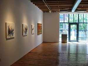 Chase Young Gallery