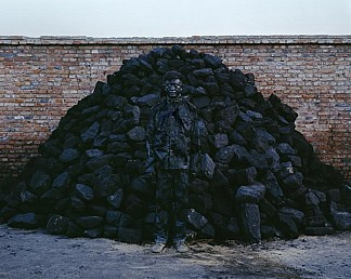Hiding in the City Coal Pile #95